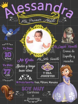 Pizarra Princesa Sofía
